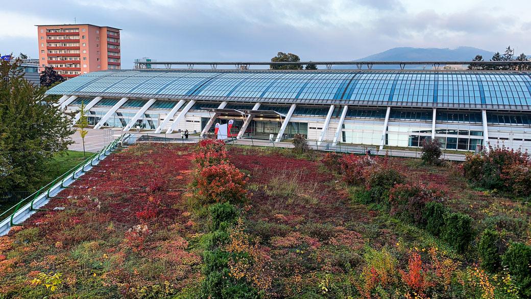 Trierenberg Super Circuit 2019 - Design-Center Linz