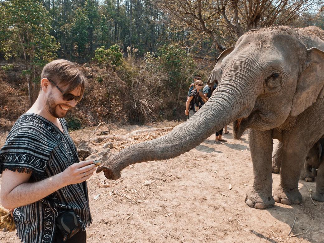 Mann füttert Elefanten mit einer Banane