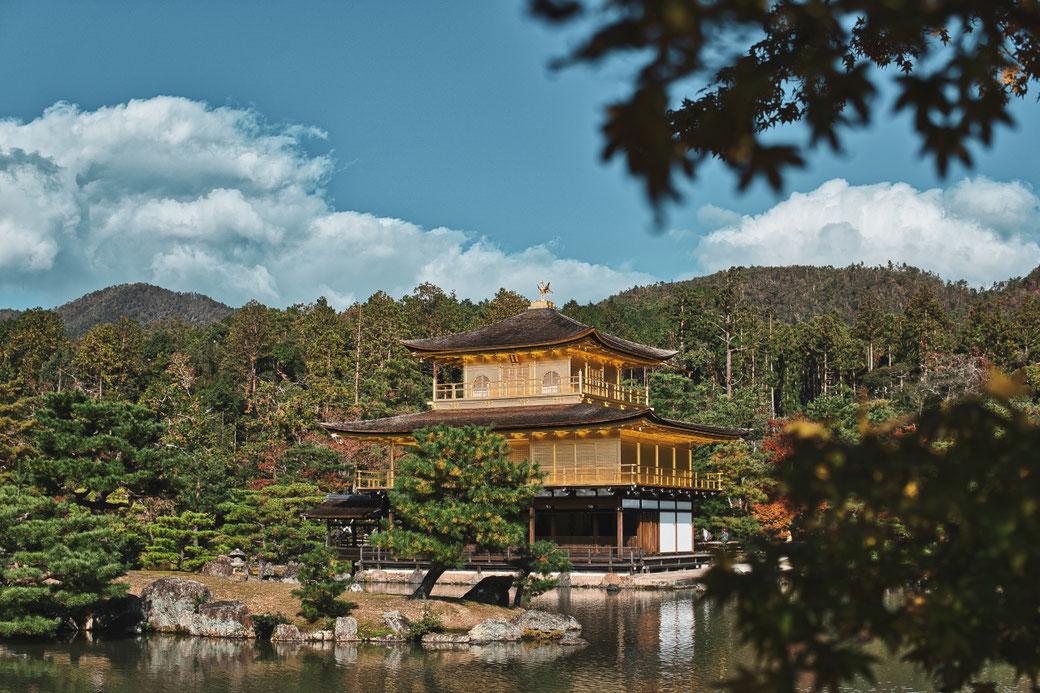 Goldener Pavillion Kyoto. Am Rand ein ein Baum, im vordergrund ein See im hintergrund die bergige Landschaft