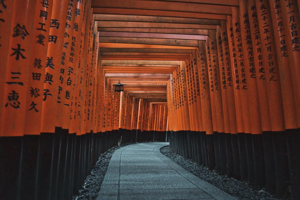 Steinweg führt durch mit japanischen Schriftzeichen beschrifteten Orangenen Toren