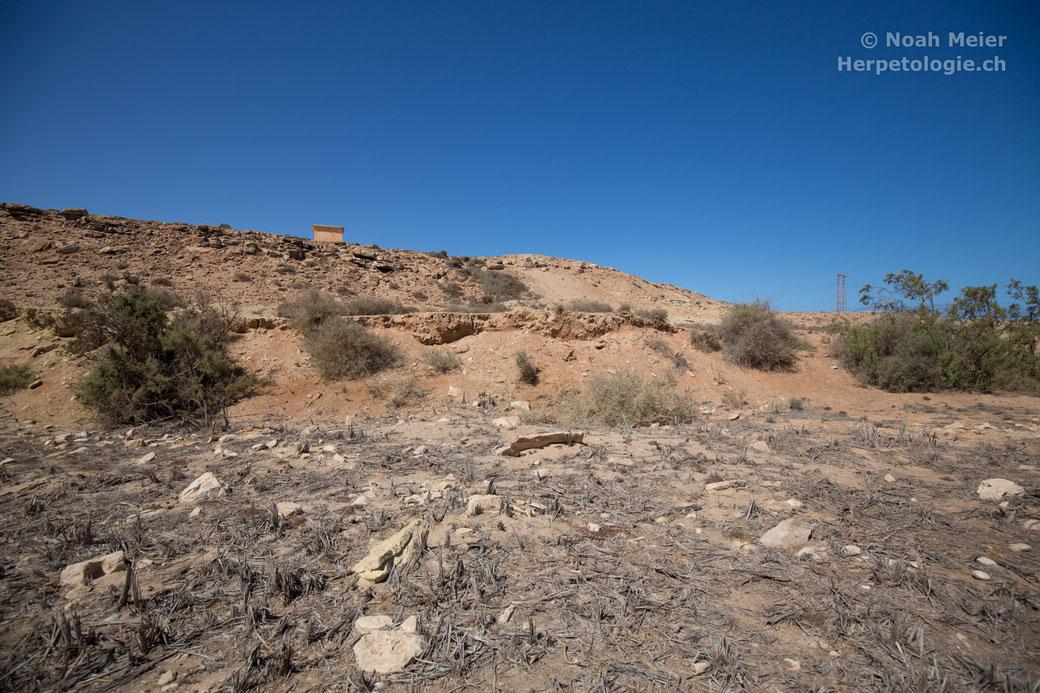 Landschaft auf dem Plateau Fort Bou Jerif