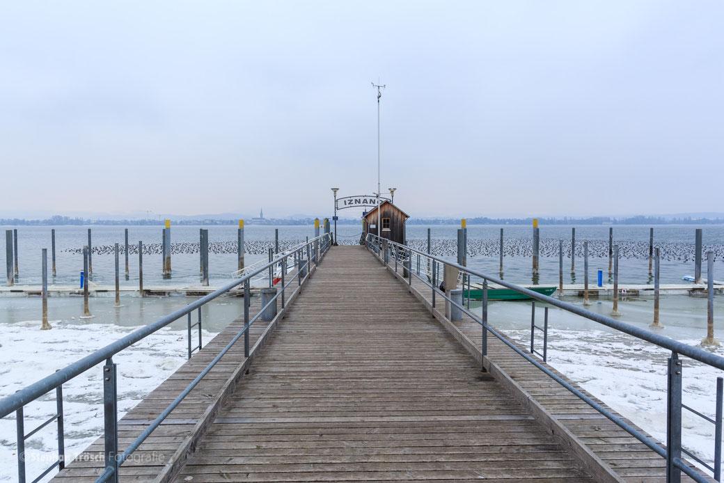 Bootshafen Iznang im Januar 2017
