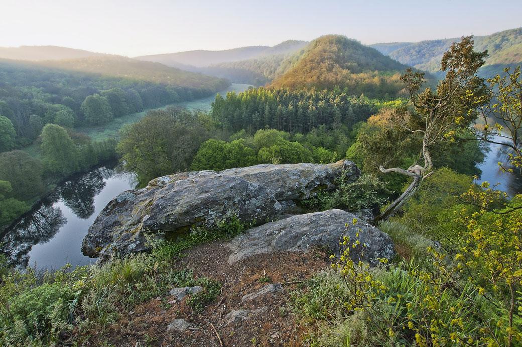 Die Thaya zwischen steilen Felsen und sanften Wiesen