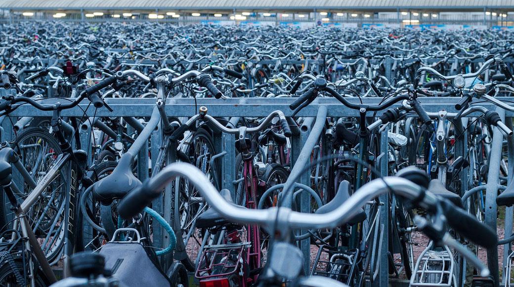 自転車の放置車両の無料引き取りはフリコレ!札幌店へお任せ下さい!