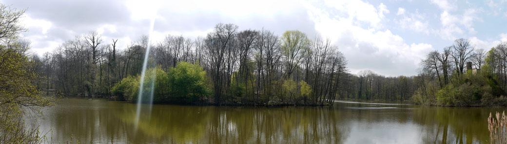 Spaziergang rund um den Bagnosee im gleichnamigen Park, nahe Steinfurt gelegen.