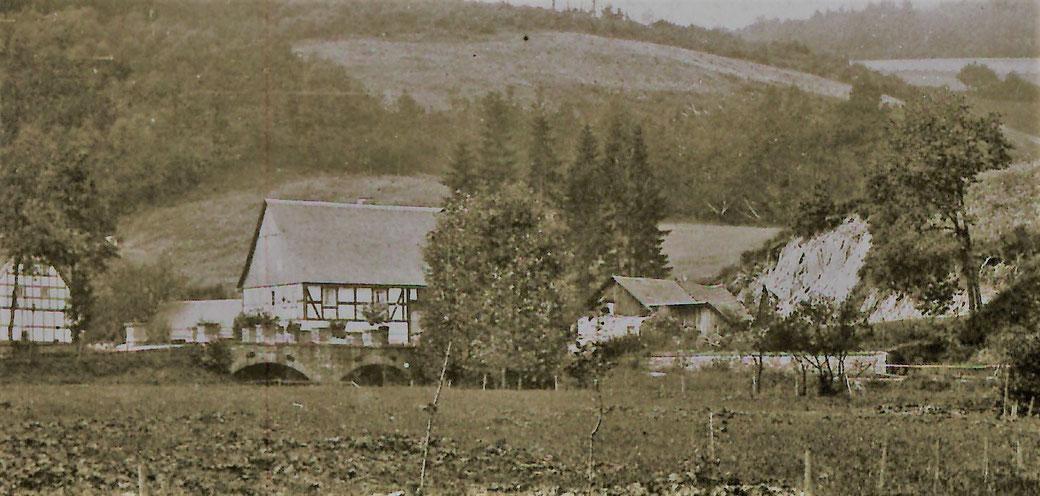 """Bildausschnitt vom Foto um 1900: Müllers Wohnhaus mit 1868 errichtetem Stall. Daneben die """"Steinkuhle"""" und späterer Garten, 1905 vom Schulte gekauft"""