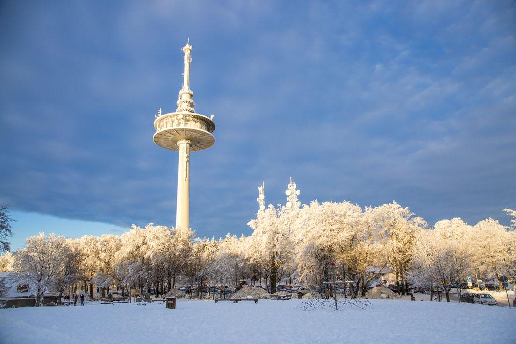 Hoherodskopf im Winter,