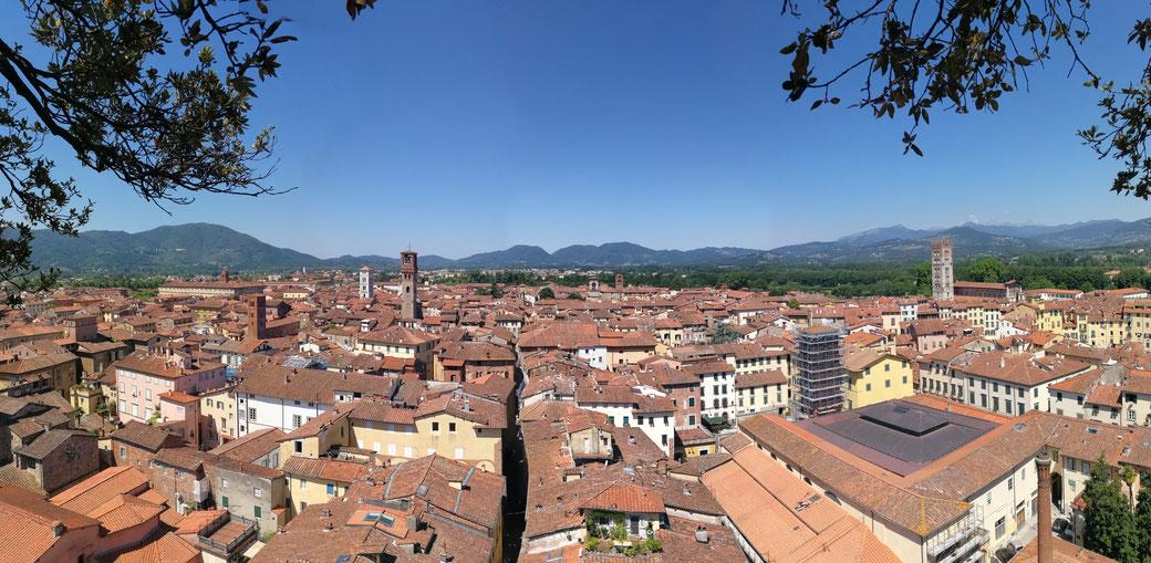 Ausblick vom Torre Guinigi, Lucca -