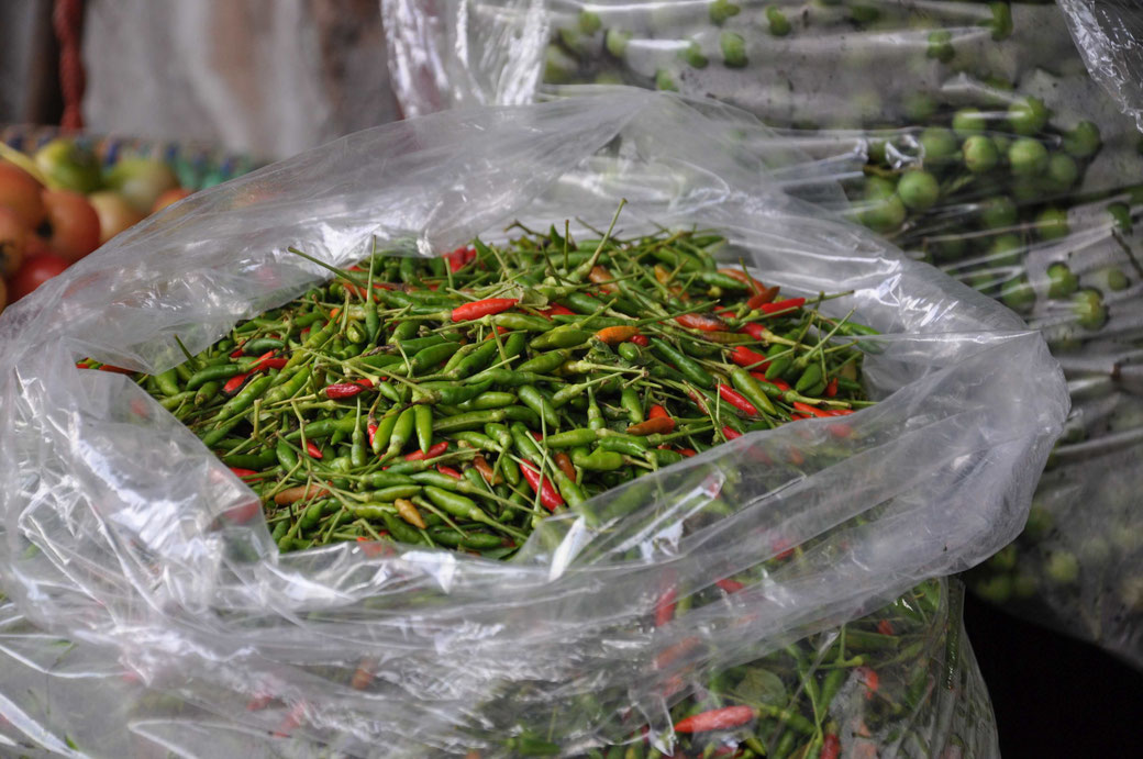 Travel Thailand Markt Chilli