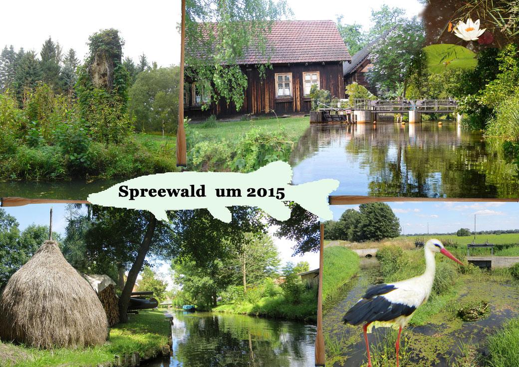 Spreewald um 2015