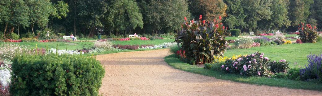 Park auf der Margareteninsel