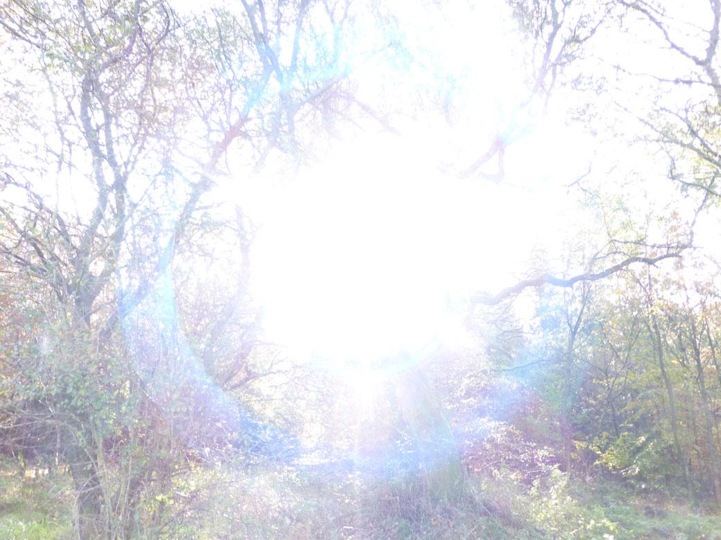 Verbinde Dich mit dem Licht der Quelle, und Du erfährst die Rückanbindung an Deinen Göttlichen Kern als Teil der Urquelle     ©www.lichtwesenfotografie.com
