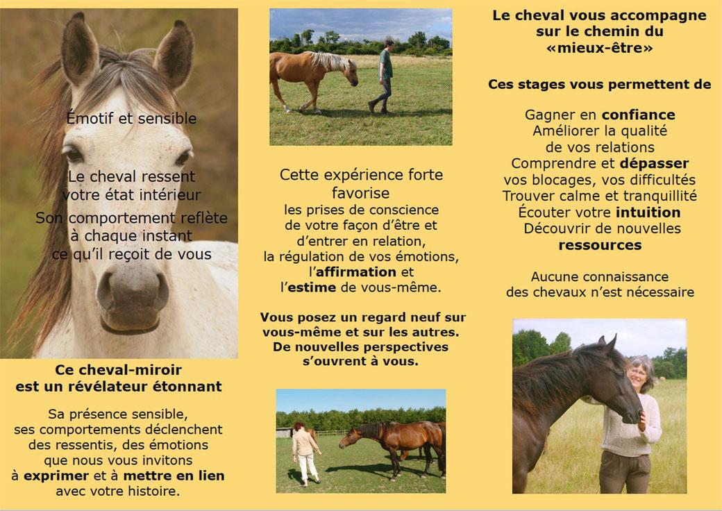 Développement Personnel avec le cheval Cheval et Sens