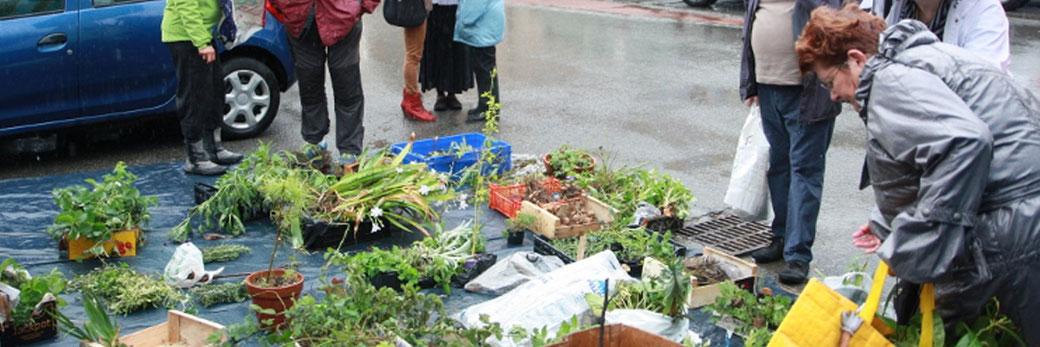 Echange de Plantes d'Arvillard - L'évènement des jardiniers