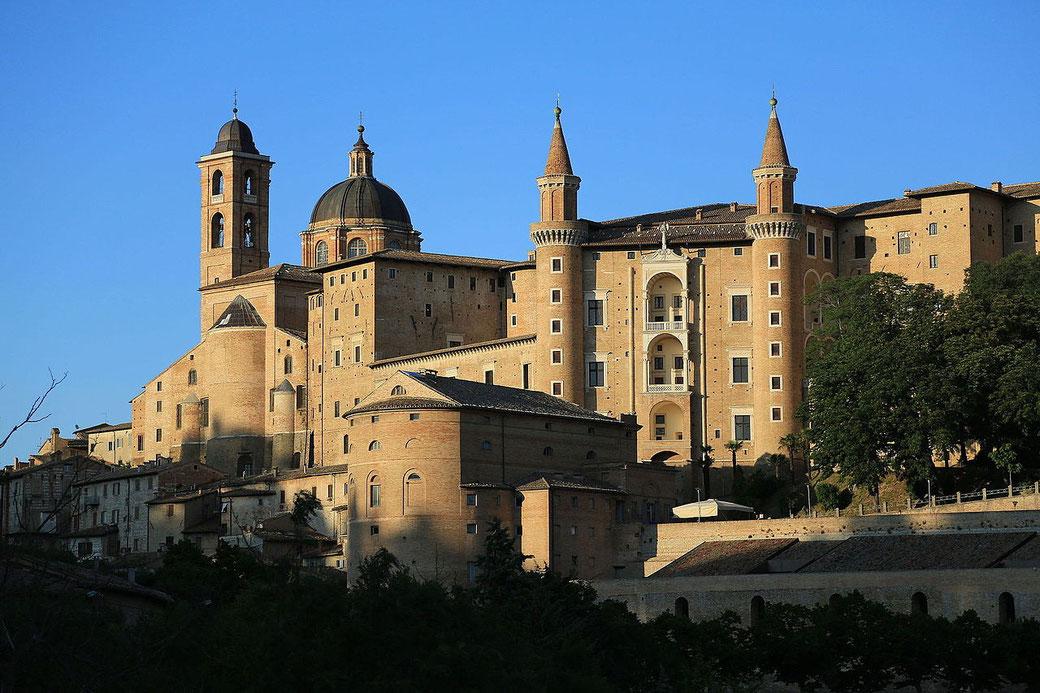 Connessioni Culturali: Palazzo Ducale di Urbino