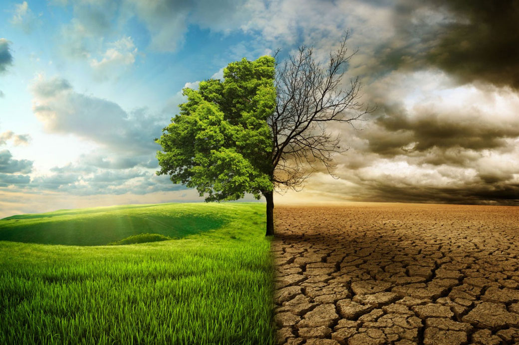 Connessioni Culturali: Cambiamenti climatici