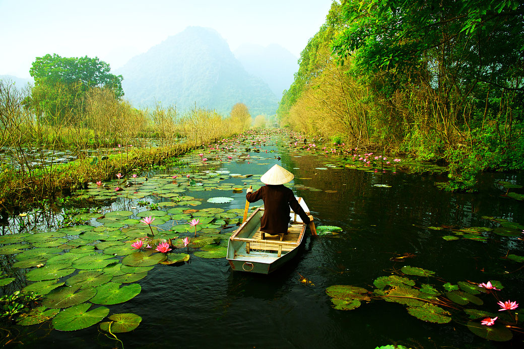 Connessioni Culturali: Vietnam