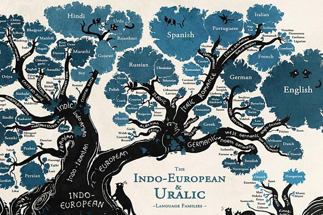 Connessioni Culturali: Lingue indoeuropee