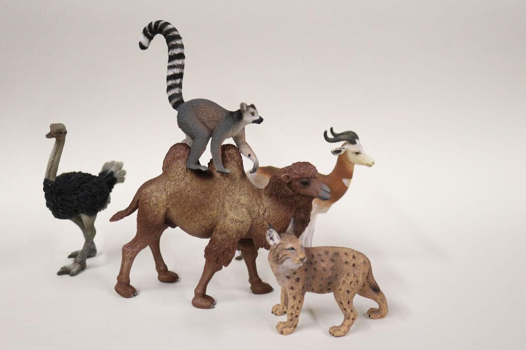 schleichtiere papo tierfiguren afrika tiere presenta spielzeigmarkt kamel elefant tiger löwe spielzeug kinderbedarf spieltiere spielfigur