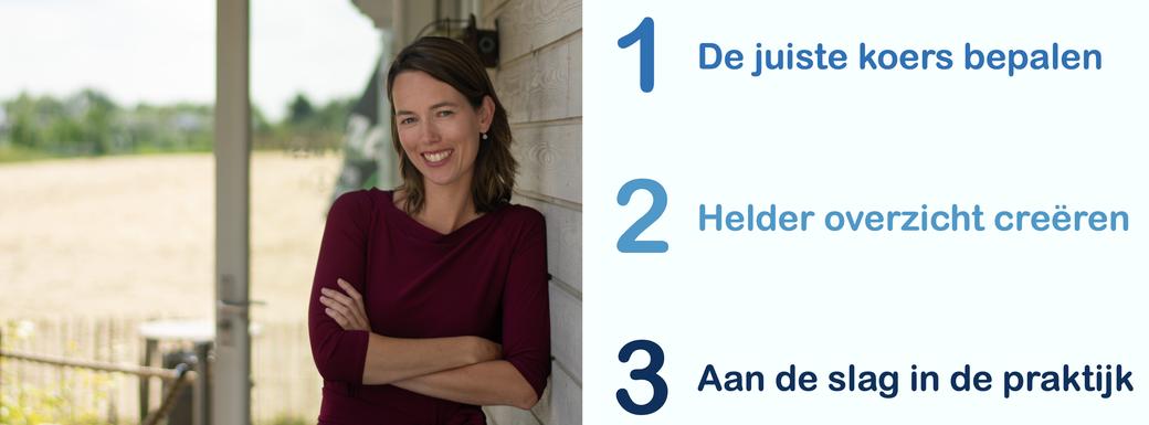 Janneke de Groot - Amplitudo