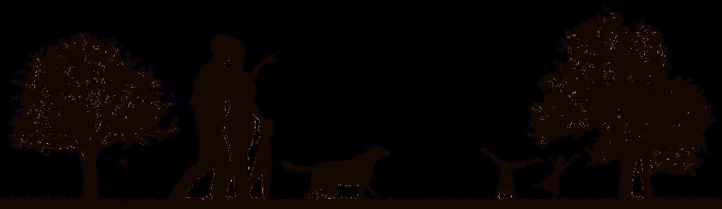 Hundetrainer werden - Ausbildung zum Hundetrainer
