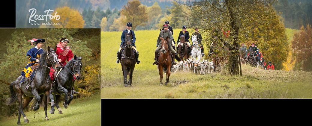 Schleppjagd Sigmaringen Deutscher Kavallerieverband; RossFoto Dana Krimmling; Pferdefotografie; Schleppjagdverein von Bayern, Bayernmeute, Jagdhunde, Fotografie, Jagdreiten, westernreiten, freizeitreiten, Wanderreiten;
