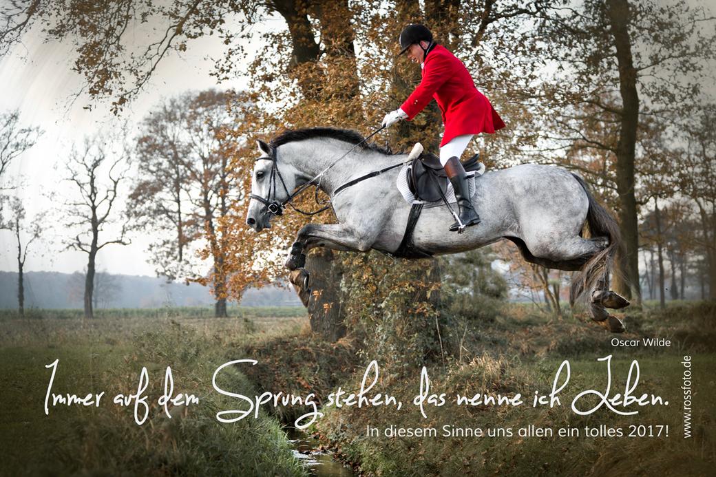 Pferd im Schnee; Pferdeauge im Schnee; Reiten im Winter; Reiterin im tiefen Schnee, Rossfoto Dana Krimmling, Pferdefotografie