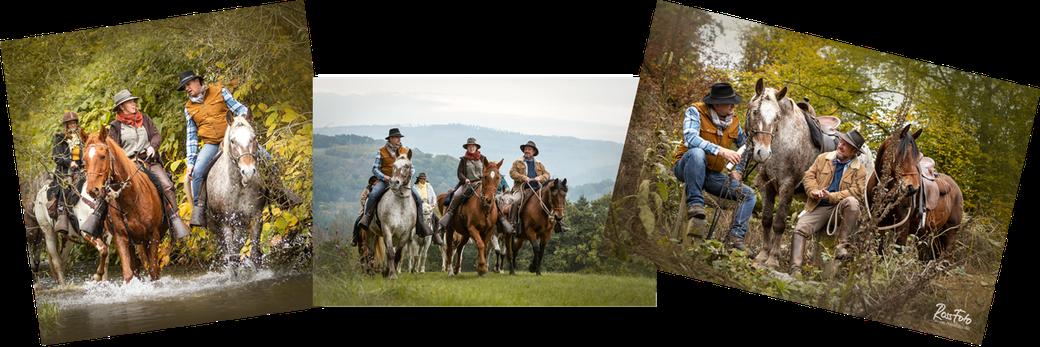 RossFoto Dana Krimmling; Fischerhof Wanderreiten im Herbst; Wanderittpferde; Reisen zu Pferd; Montabaur; Westerwald; Reiten; ausreiten