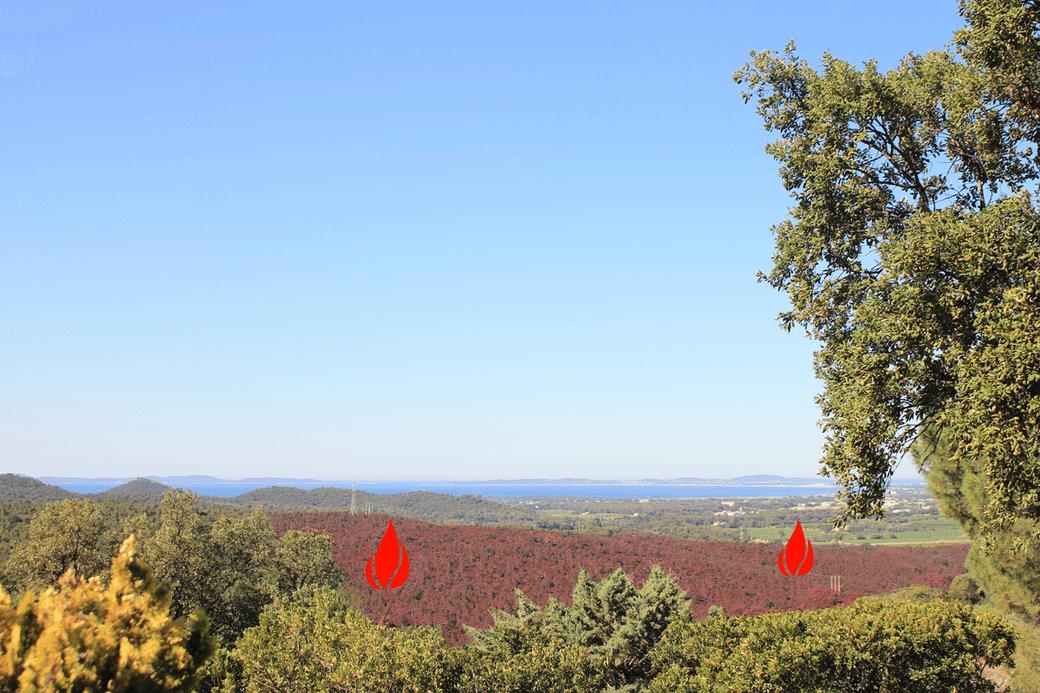 Waldbrand Südfrankreich