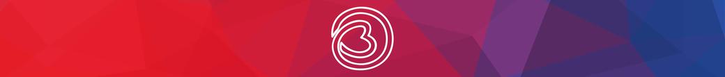 beeldmerk logo huisstijl birgit timmers coach trainer behartiger B