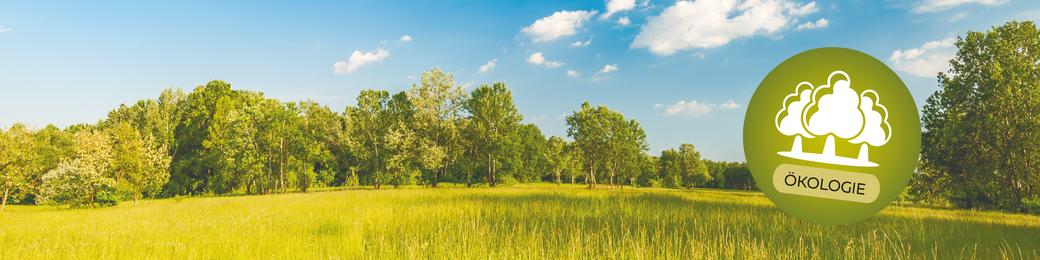 Holz und Strohballenhäuser vom Laireiter - Drei Säulen der Nachhaltigkeit - Sozialer Aspekt