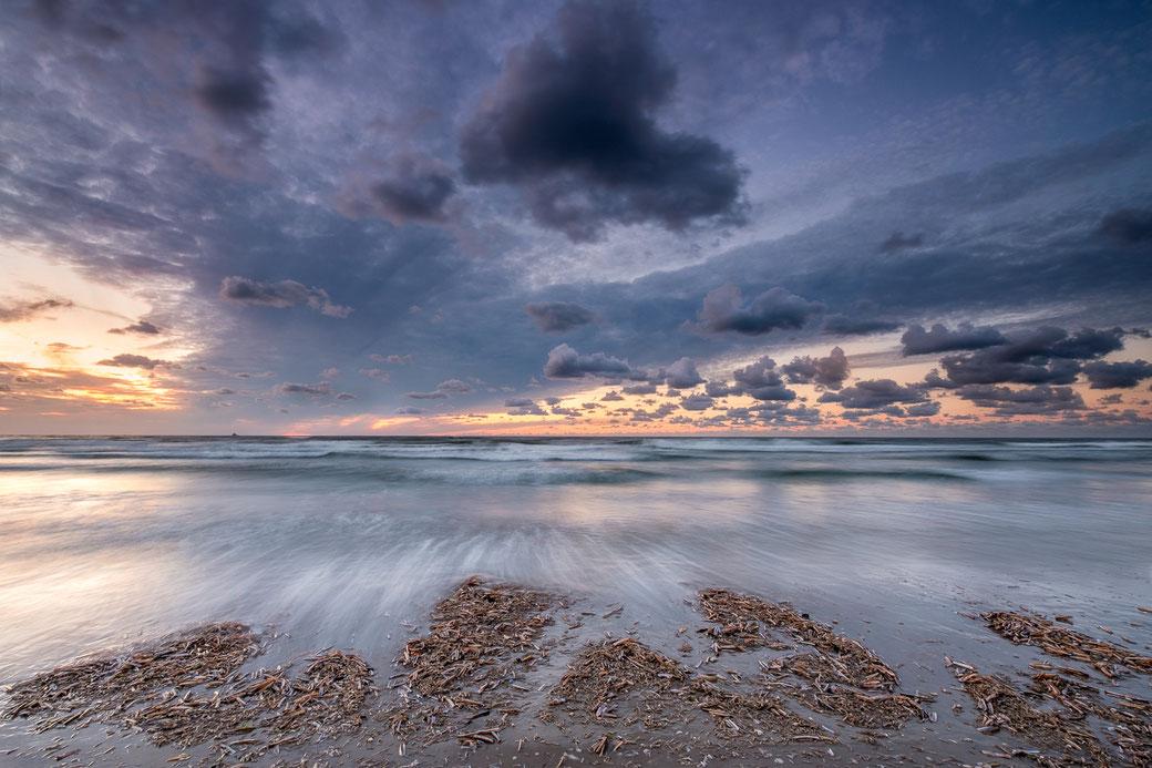 Shells, Noordzeestrand Terschelling ©Jurjen Veerman