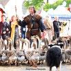 Fête médiévale de Liverdun - 14e édition