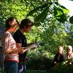 4ème édition - Festival de poésie OuLiPo