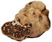 Der weißliche Trüffel hat einen milderen Geschmack als der echte weiße Albatrüffel oder schwarze Trüffel