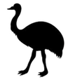 struisvogel hondensnacks
