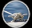 Vie maritime locale