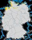 Karte zur Verbreitung des Säbelschnäblers (Recurvirostra avosetta) in Deutschland