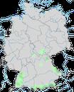 Karte zur Verbreitung des Fasans (Phasianus colchicus) in Deutschland