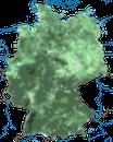 Karte zur Verbreitung des Wintergoldhähnchens in Deutschland