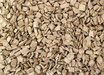 CEMWOOD Winter Wood Chips 10 Liter