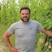 Barbera d`Alba 2018 DOC Bricco Campi Cascina Casanova