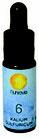 Mineralsole Nr. 6 Kalium Sulfuricum 10 ml