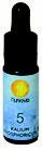 Mineralsole Nr. 5 Kalium Phosphoricum 10 ml