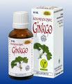 Ginkgo - Natur