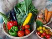 いそベジ農場 野菜セット