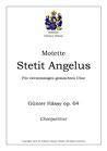 "Motette ""Stetit Angelus"", op. 64"