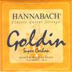 ハナバッハ ゴールディン 2弦