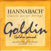 ハナバッハ ゴールディン 6弦