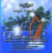 HEMI SYNC ANGEL PARADISE